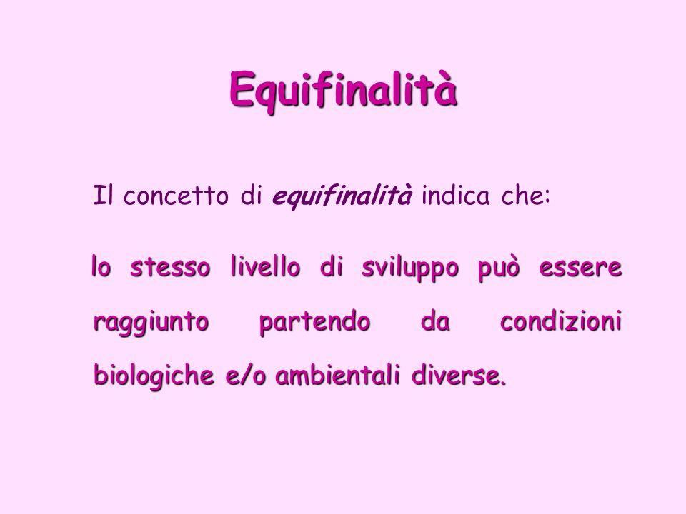 Equifinalità Il concetto di equifinalità indica che:
