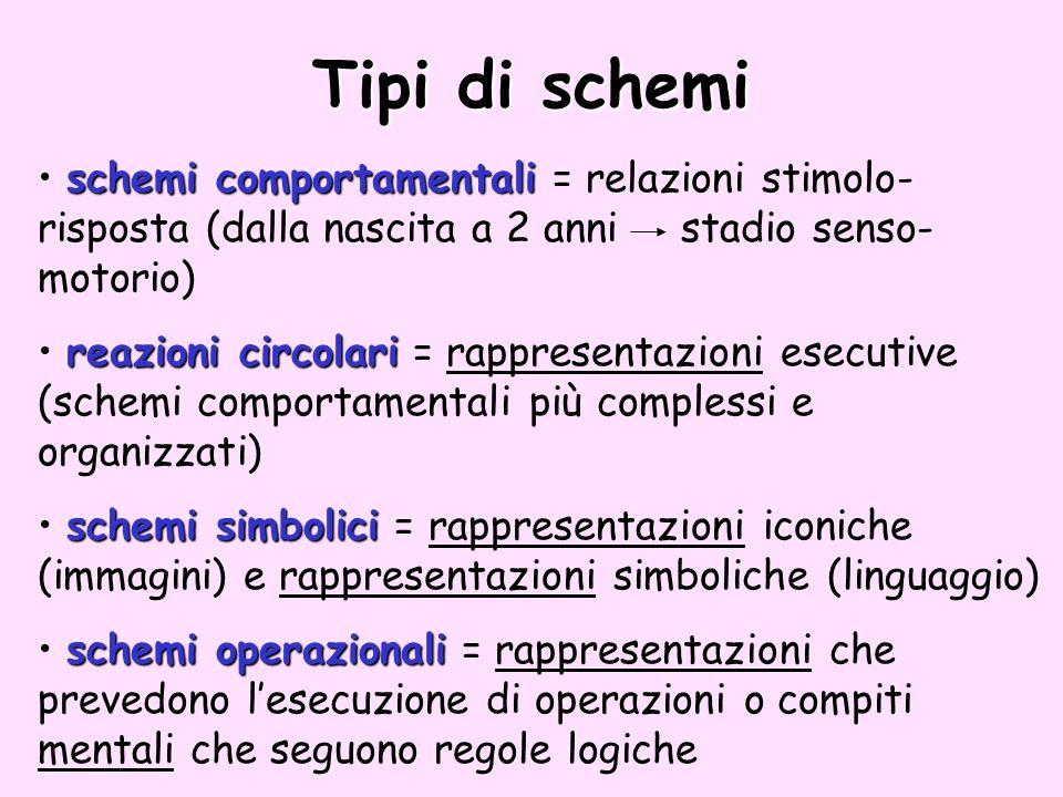 Tipi di schemi schemi comportamentali = relazioni stimolo-risposta (dalla nascita a 2 anni stadio senso-motorio)