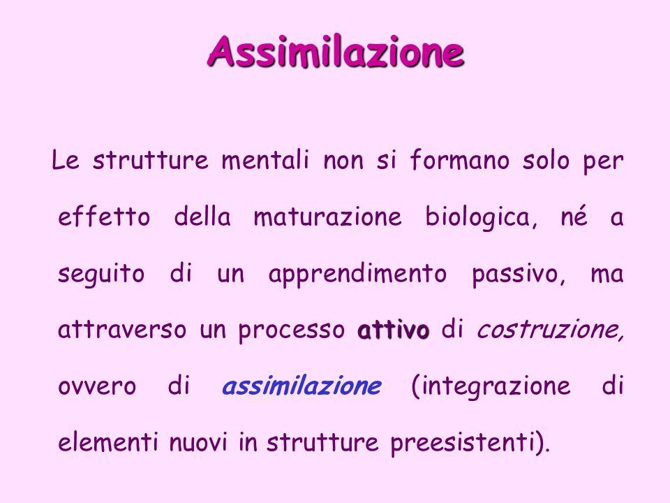Assimilazione
