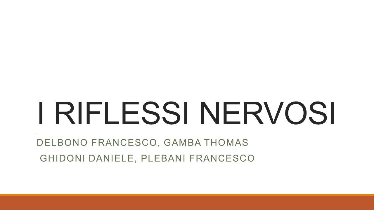 Delbono Francesco, Gamba Thomas Ghidoni Daniele, Plebani Francesco