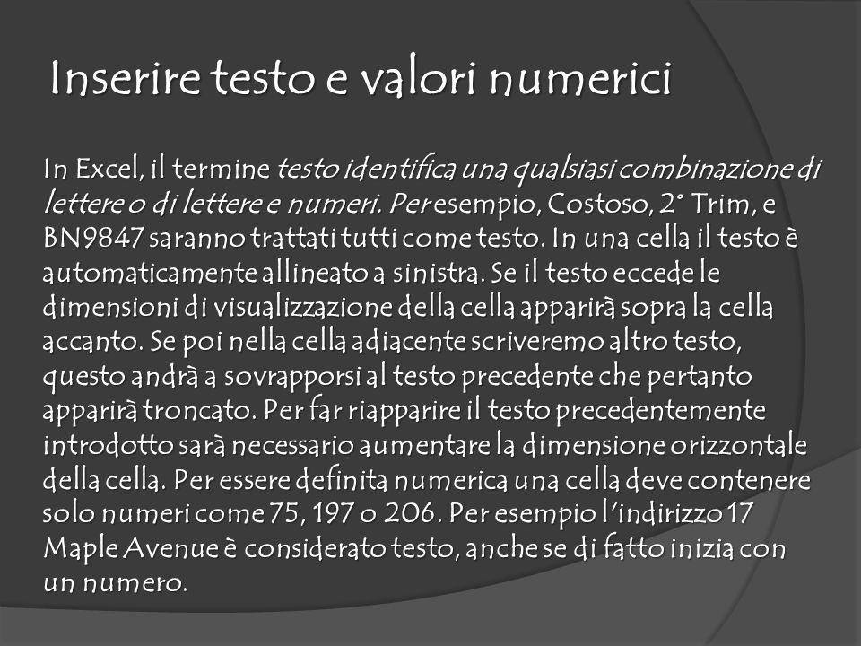 Inserire testo e valori numerici