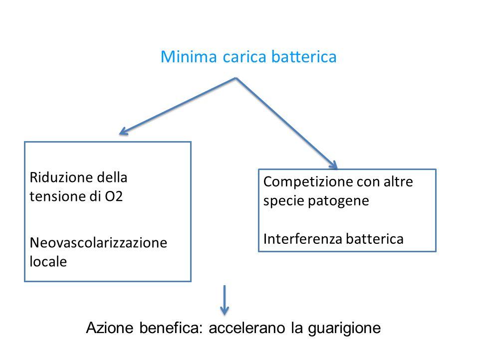 Minima carica batterica