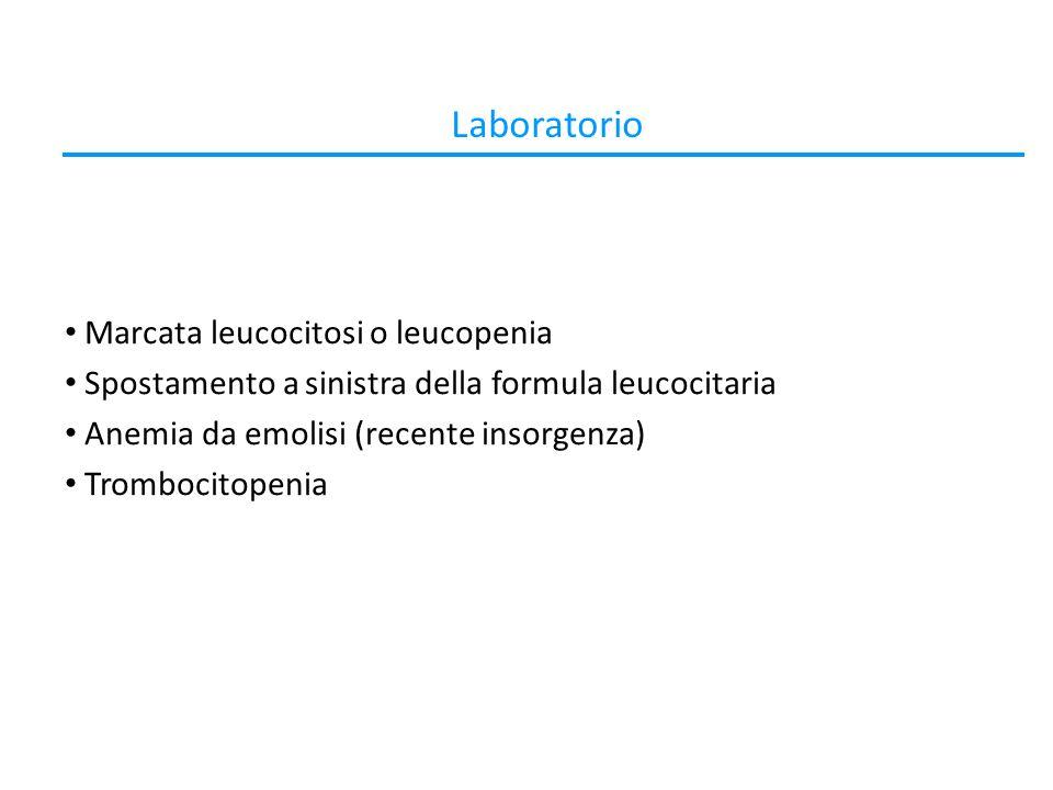 Laboratorio Marcata leucocitosi o leucopenia
