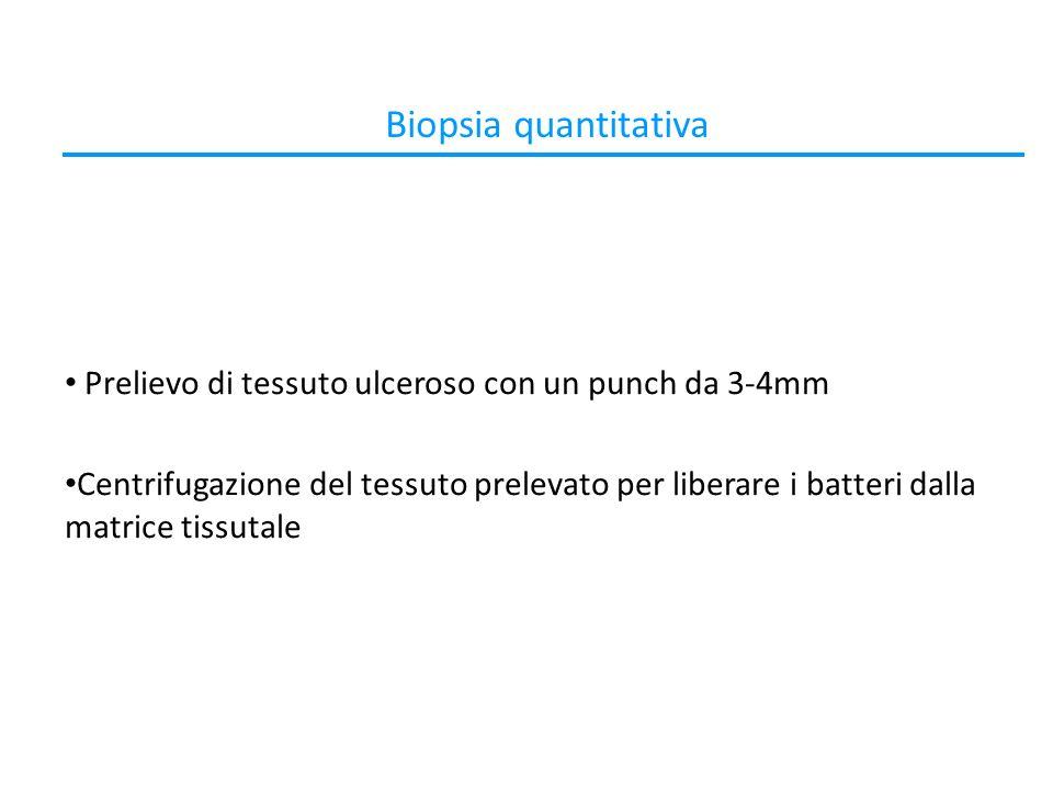 Biopsia quantitativa Prelievo di tessuto ulceroso con un punch da 3-4mm.