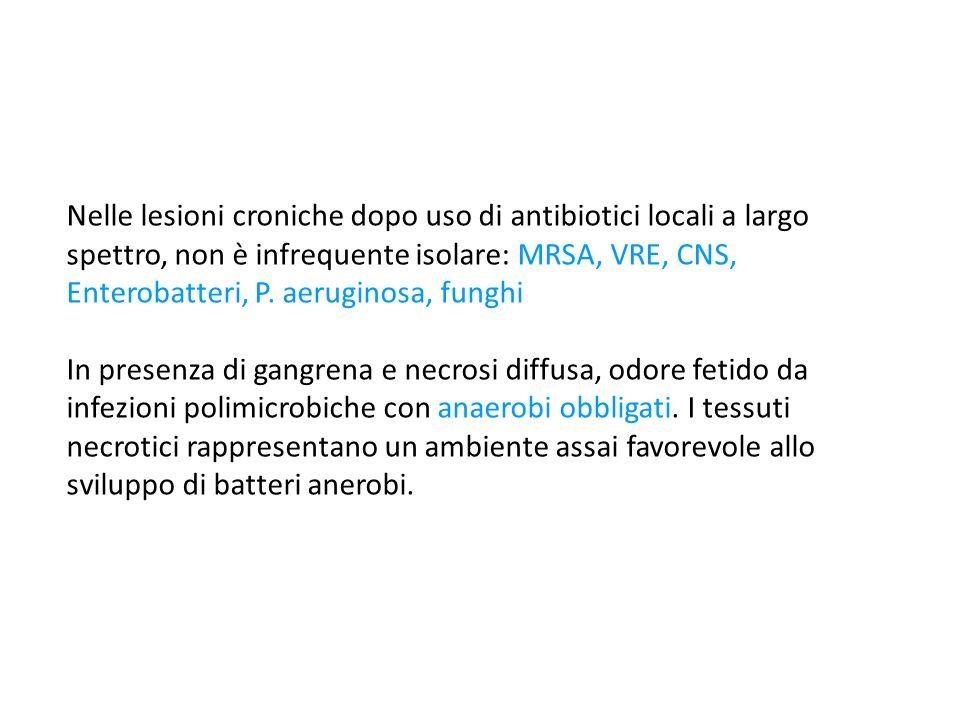 Nelle lesioni croniche dopo uso di antibiotici locali a largo spettro, non è infrequente isolare: MRSA, VRE, CNS, Enterobatteri, P. aeruginosa, funghi
