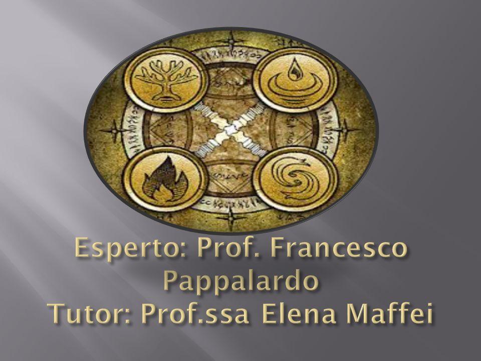 Esperto: Prof. Francesco Pappalardo Tutor: Prof.ssa Elena Maffei