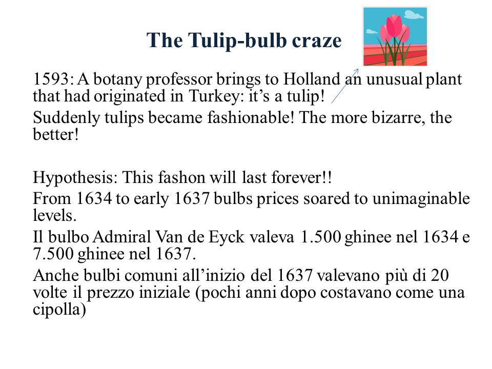 The Tulip-bulb craze 1593: A botany professor brings to Holland an unusual plant that had originated in Turkey: it's a tulip!