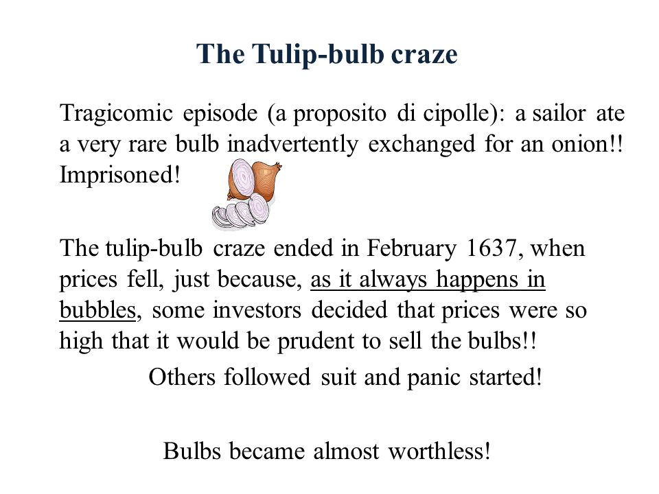 The Tulip-bulb craze Tragicomic episode (a proposito di cipolle): a sailor ate a very rare bulb inadvertently exchanged for an onion!! Imprisoned!