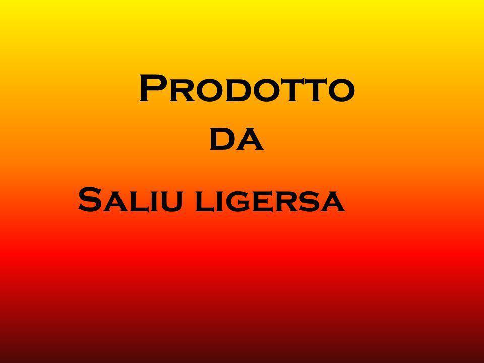Prodotto da Saliu ligersa