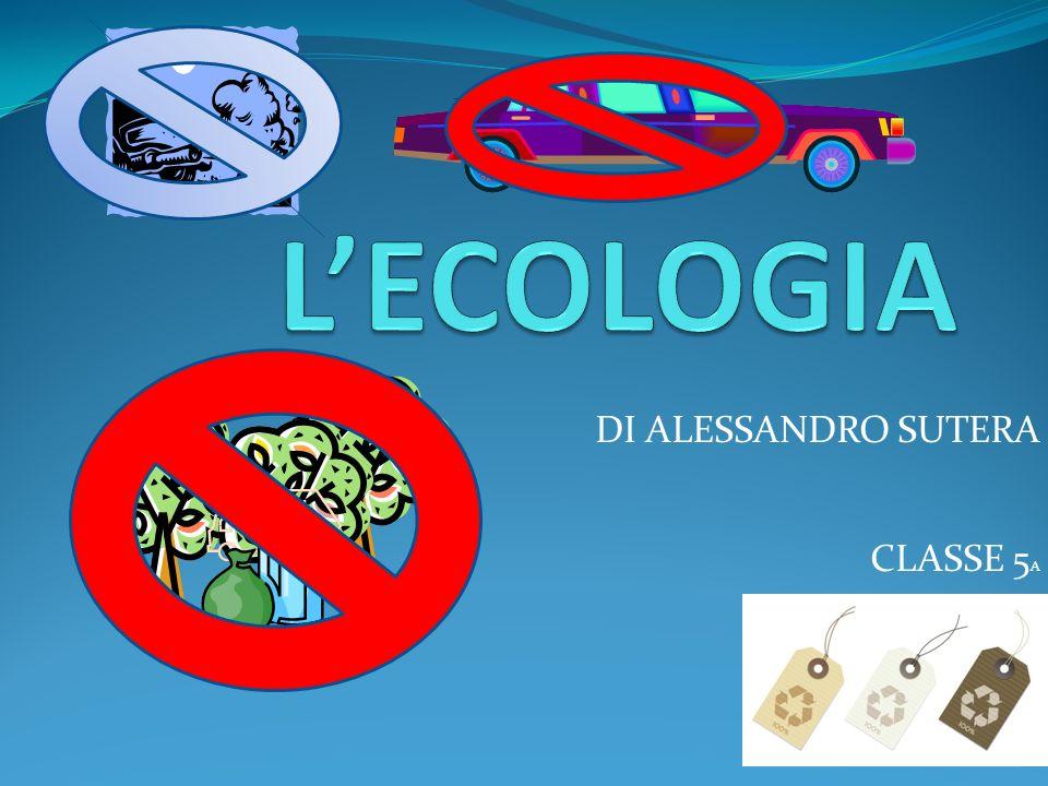 DI ALESSANDRO SUTERA CLASSE 5A