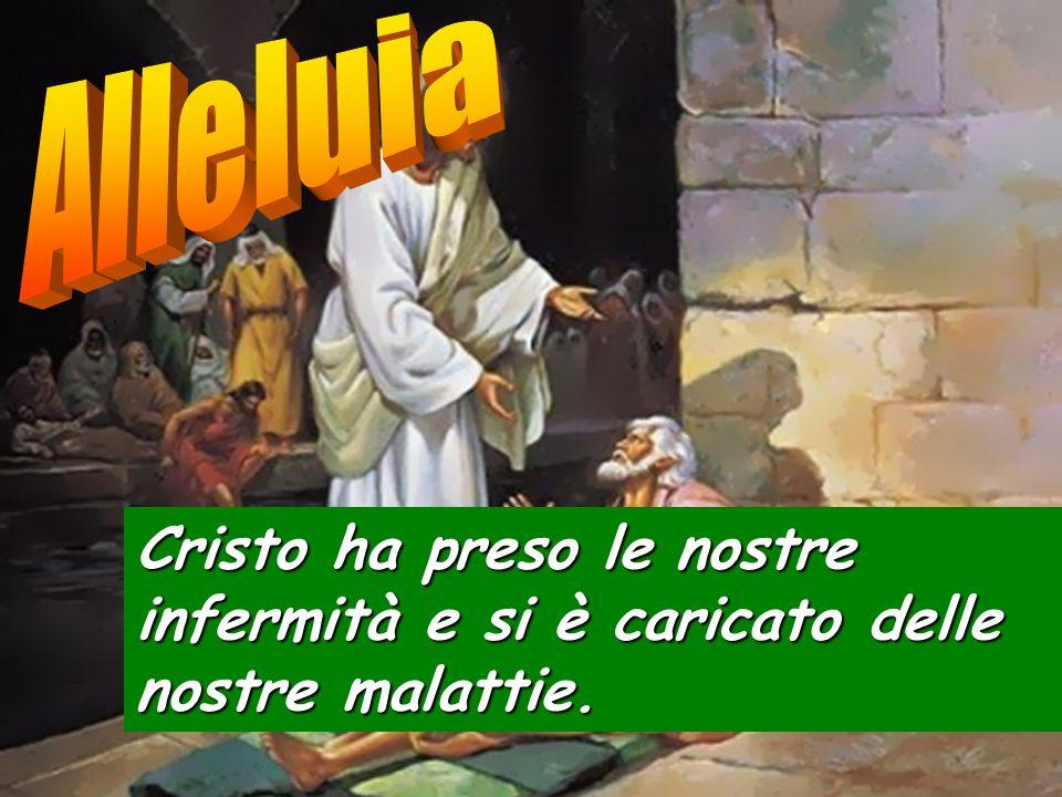 Alleluia Cristo ha preso le nostre infermità e si è caricato delle nostre malattie.