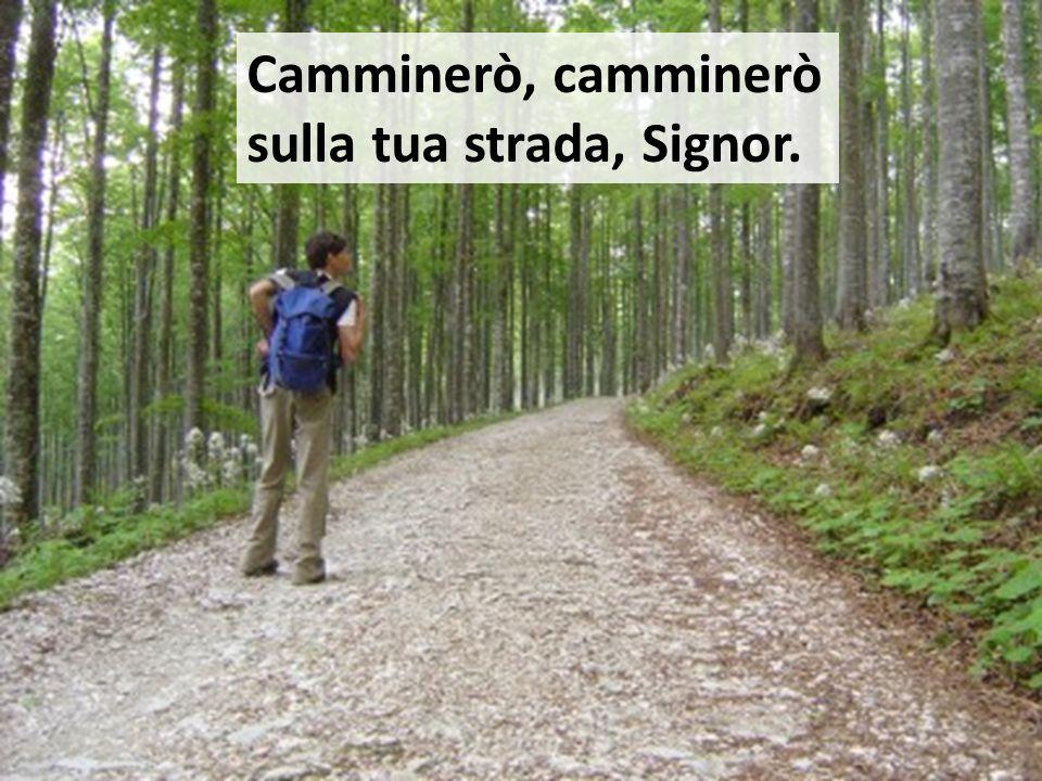 Camminerò, camminerò sulla tua strada, Signor.