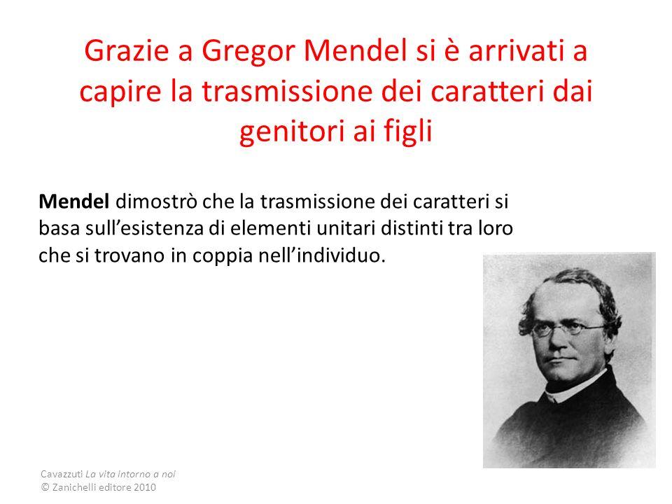 Grazie a Gregor Mendel si è arrivati a capire la trasmissione dei caratteri dai genitori ai figli