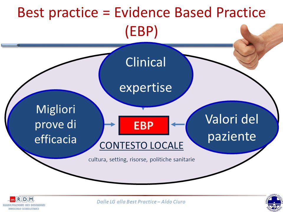 Best practice = Evidence Based Practice (EBP)