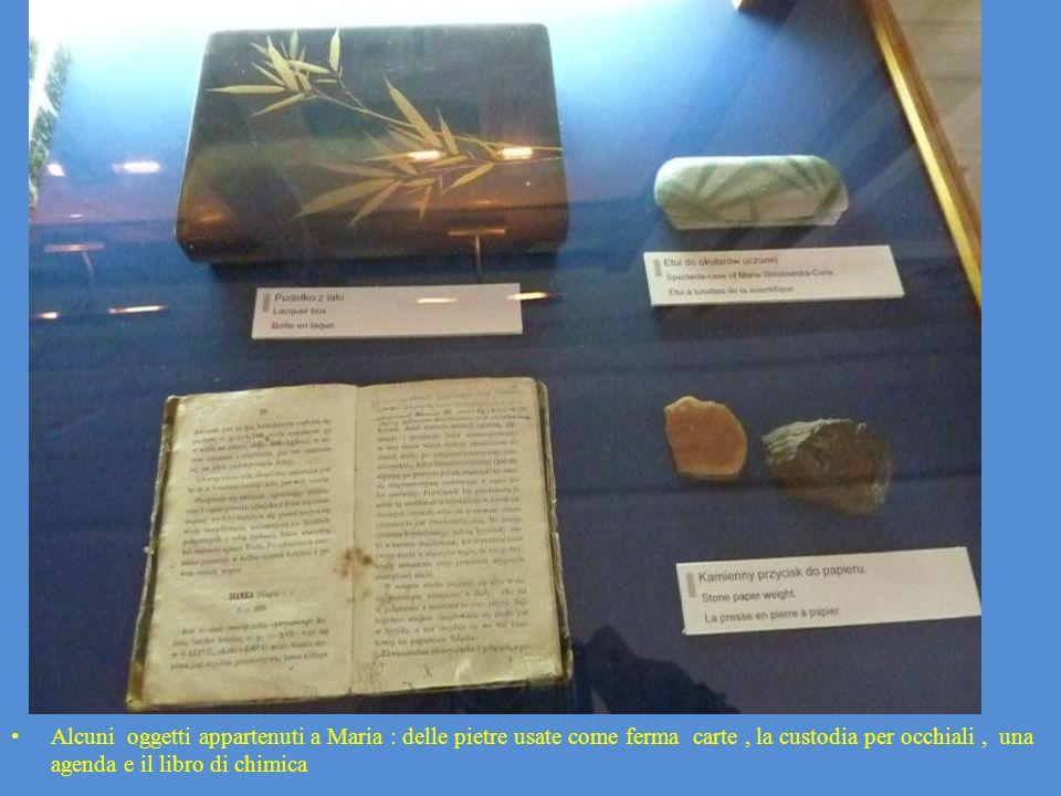 Alcuni oggetti appartenuti a Maria : delle pietre usate come ferma carte , la custodia per occhiali , una agenda e il libro di chimica