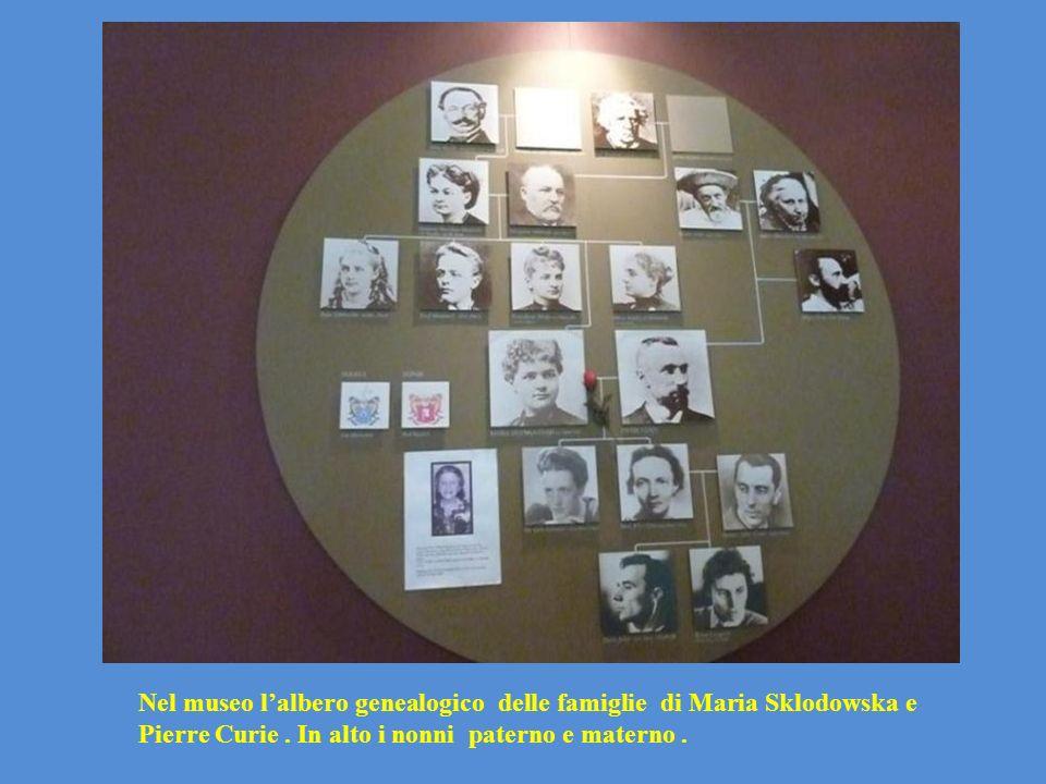 Nel museo l'albero genealogico delle famiglie di Maria Sklodowska e Pierre Curie .