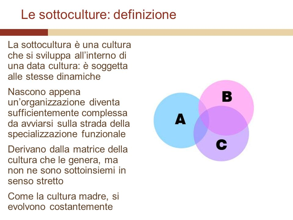 Le sottoculture: definizione