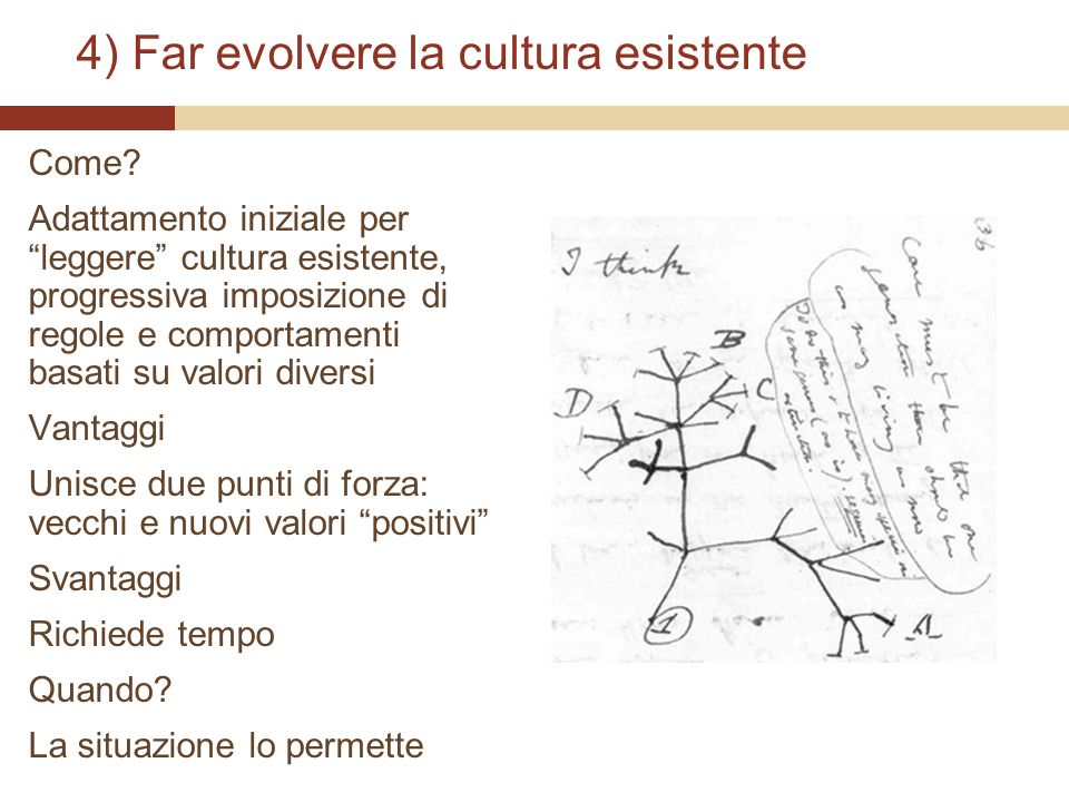 4) Far evolvere la cultura esistente
