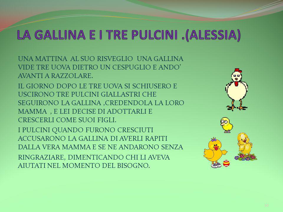 LA GALLINA E I TRE PULCINI .(ALESSIA)