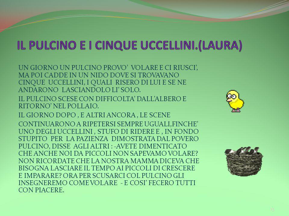 IL PULCINO E I CINQUE UCCELLINI.(LAURA)