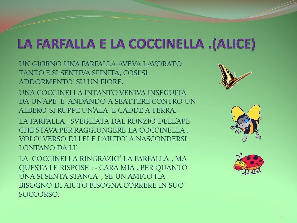 LA FARFALLA E LA COCCINELLA .(ALICE)