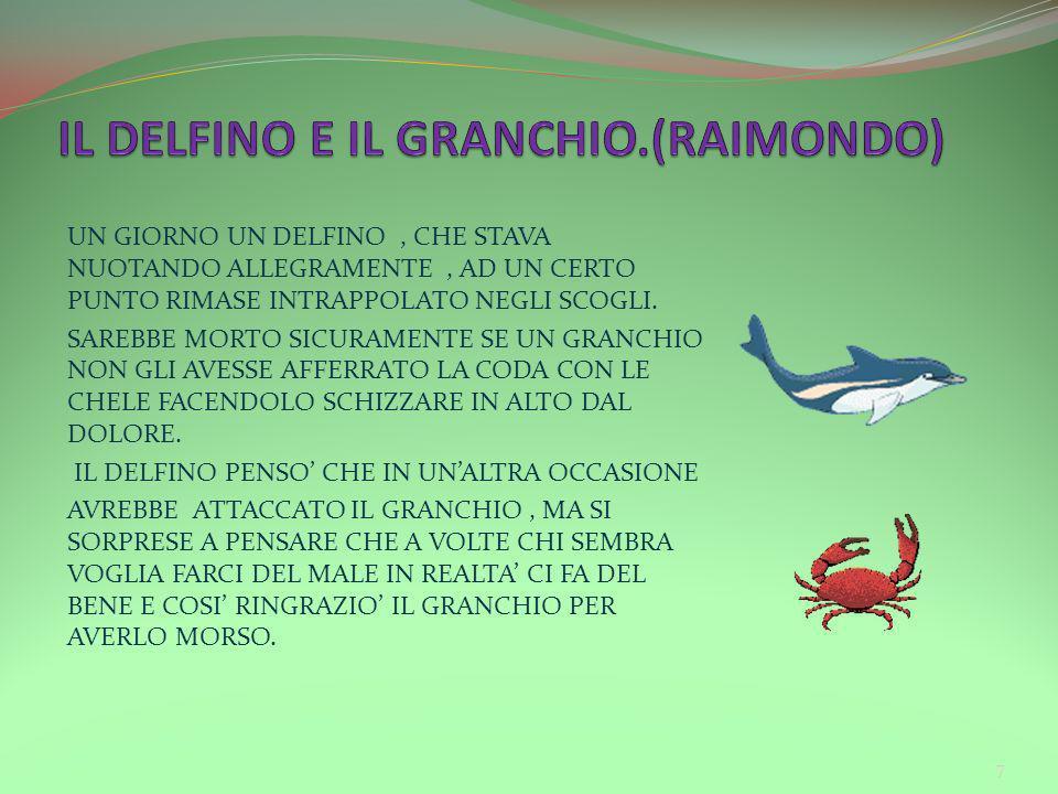 IL DELFINO E IL GRANCHIO.(RAIMONDO)