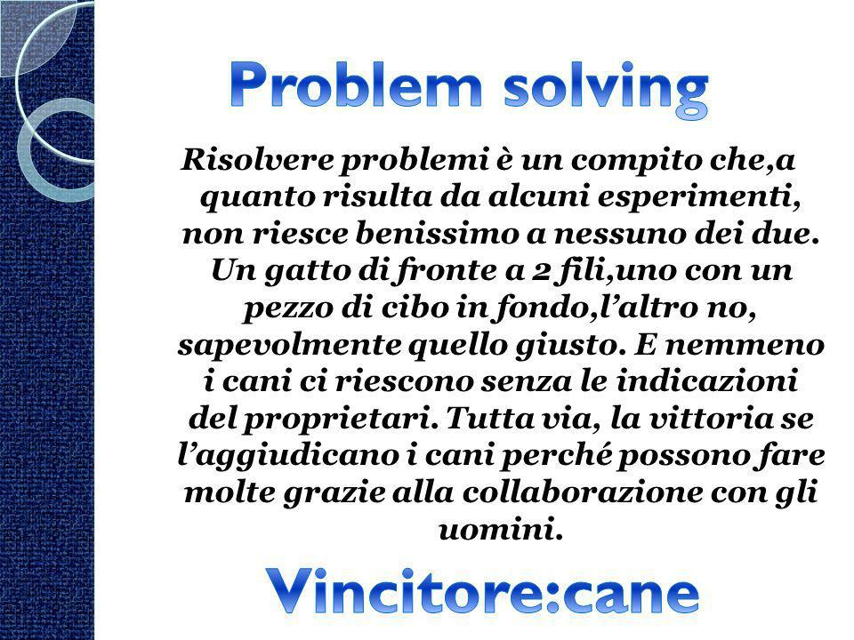 Problem solving Vincitore:cane