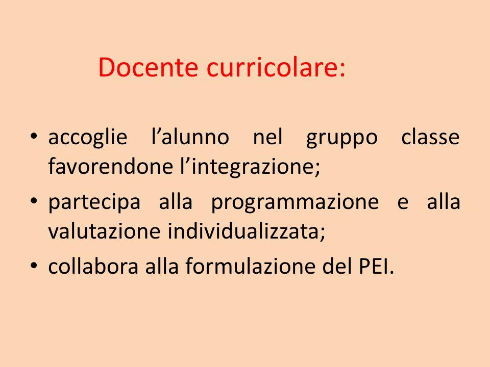 Docente curricolare: accoglie l'alunno nel gruppo classe favorendone l'integrazione;