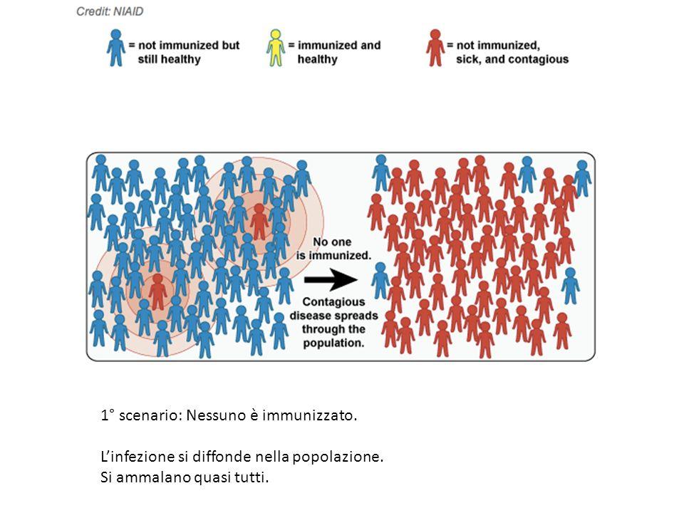 1° scenario: Nessuno è immunizzato.
