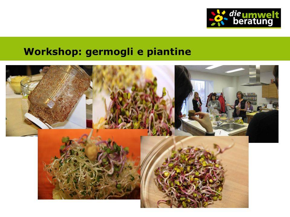 Workshop: germogli e piantine