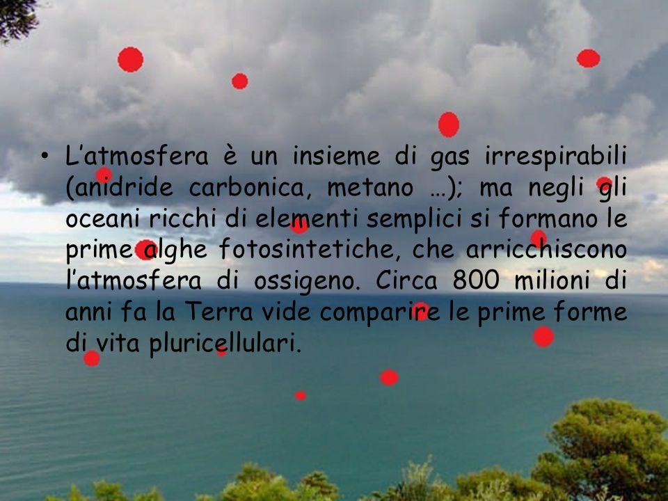 L'atmosfera è un insieme di gas irrespirabili (anidride carbonica, metano …); ma negli gli oceani ricchi di elementi semplici si formano le prime alghe fotosintetiche, che arricchiscono l'atmosfera di ossigeno.