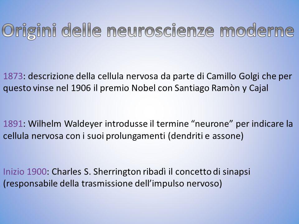 Origini delle neuroscienze moderne