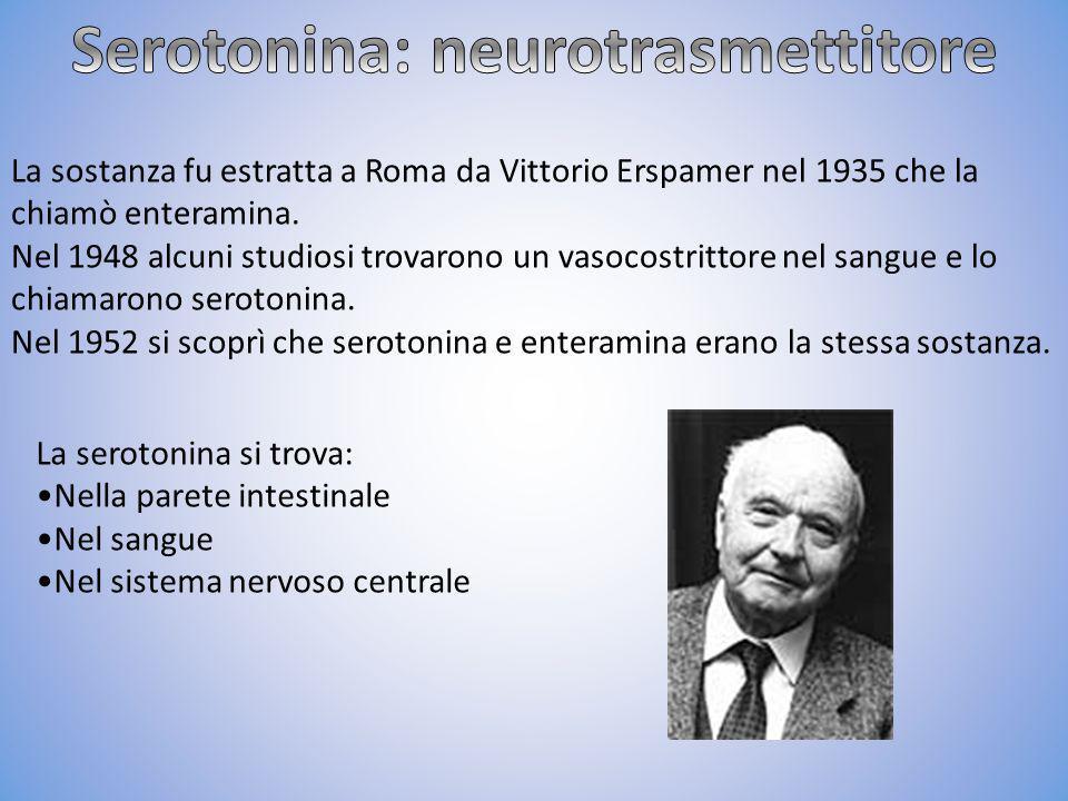 Serotonina: neurotrasmettitore