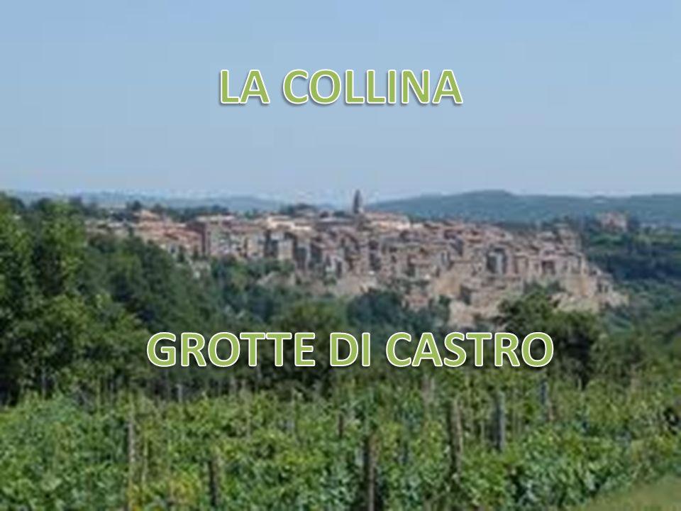 LA COLLINA GROTTE DI CASTRO