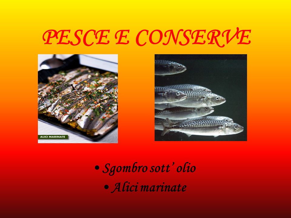 PESCE E CONSERVE Sgombro sott' olio Alici marinate