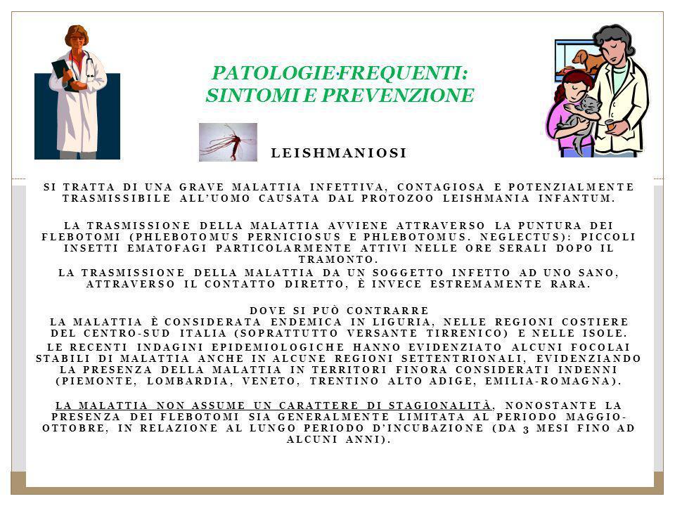 PATOLOGIE FREQUENTI: SINTOMI E PREVENZIONE