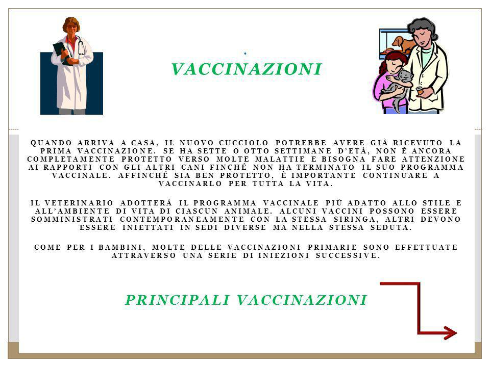 Principali vaccinazioni