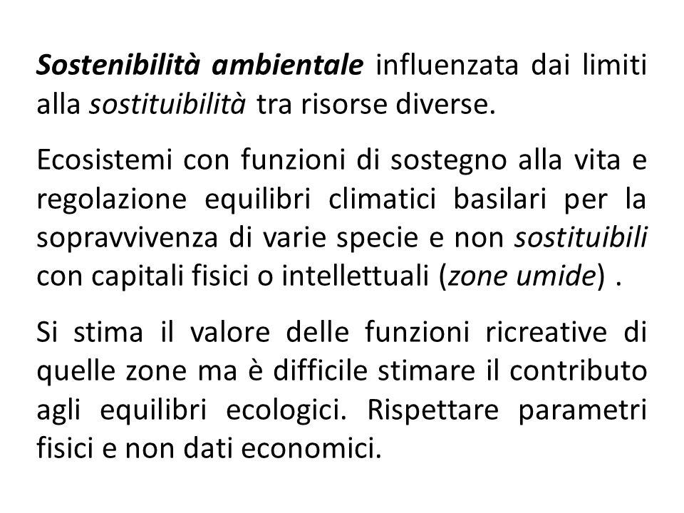 Sostenibilità ambientale influenzata dai limiti alla sostituibilità tra risorse diverse.