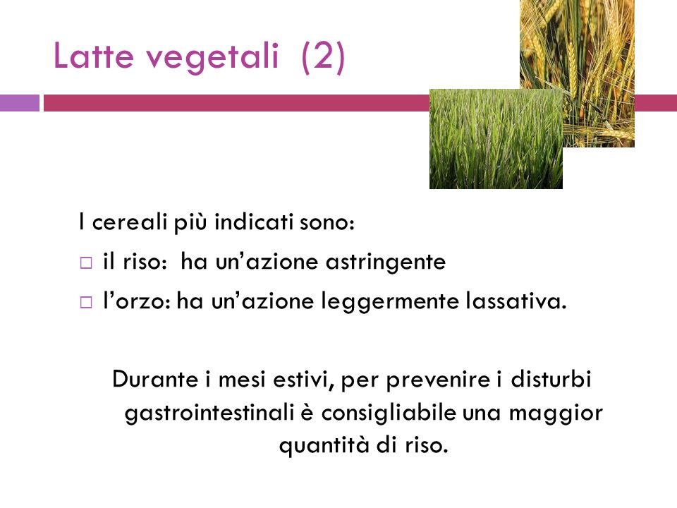 Latte vegetali (2) I cereali più indicati sono:
