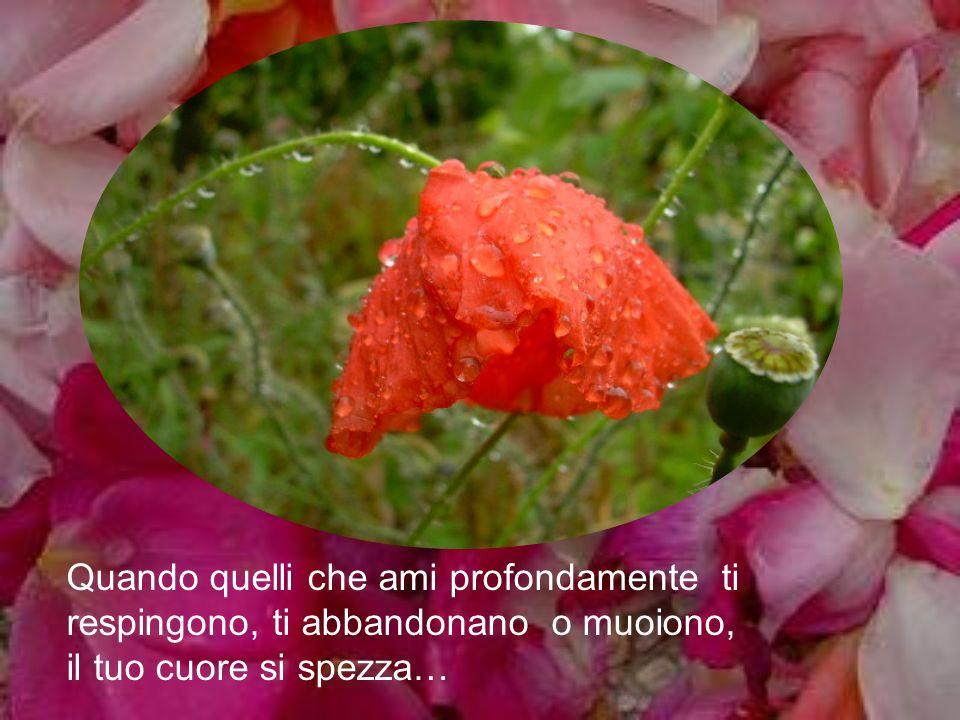 Quando quelli che ami profondamente ti respingono, ti abbandonano o muoiono, il tuo cuore si spezza…