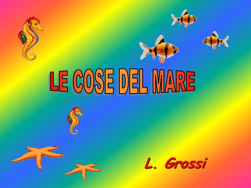 LE COSE DEL MARE L. Grossi