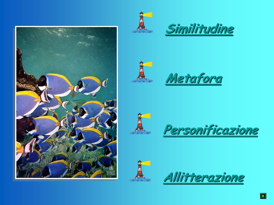 Similitudine Metafora Personificazione Allitterazione