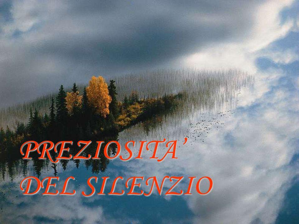 PREZIOSITA' DEL SILENZIO