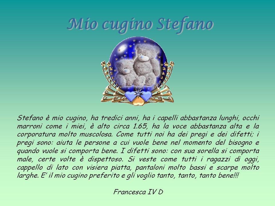 Mio cugino Stefano