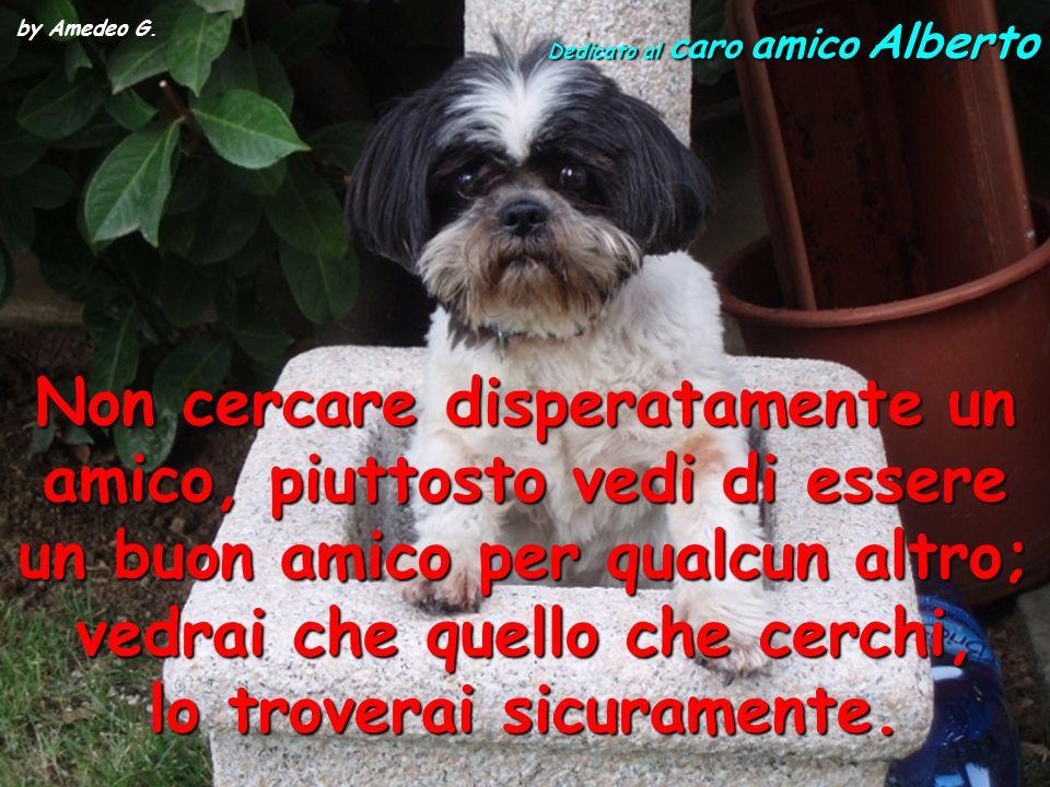 by Amedeo G. Dedicato al caro amico Alberto.