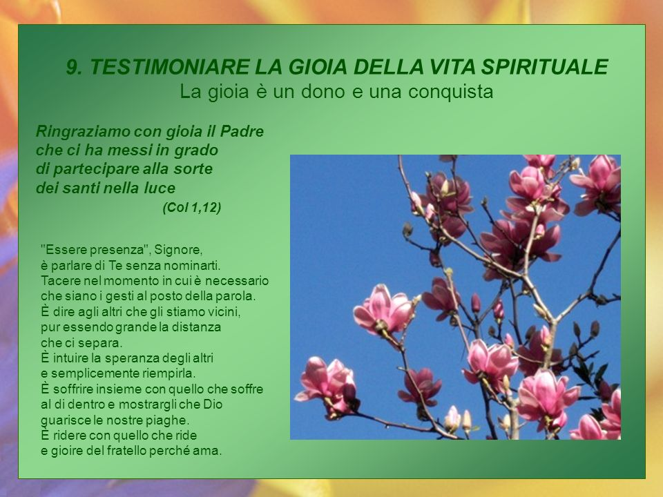 9. TESTIMONIARE LA GIOIA DELLA VITA SPIRITUALE La gioia è un dono e una conquista