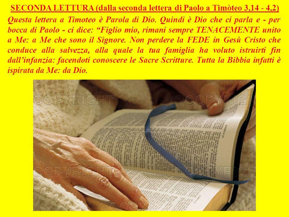 SECONDA LETTURA (dalla seconda lettera di Paolo a Timòteo 3,14 - 4,2)