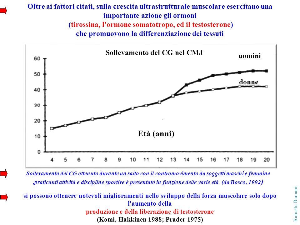 Oltre ai fattori citati, sulla crescita ultrastrutturale muscolare esercitano una importante azione gli ormoni