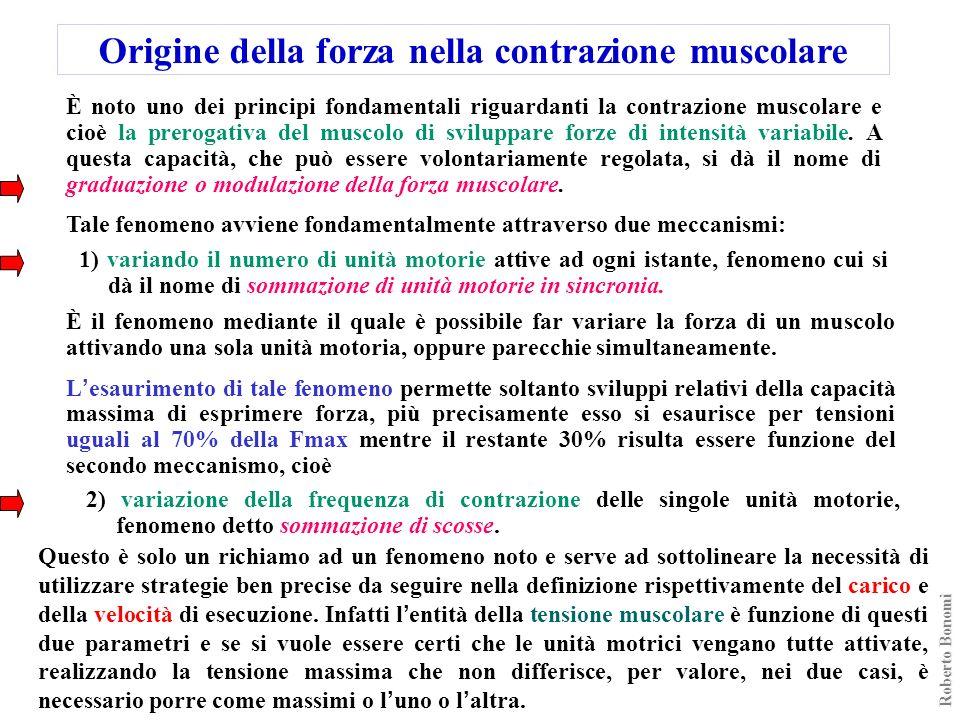 Origine della forza nella contrazione muscolare