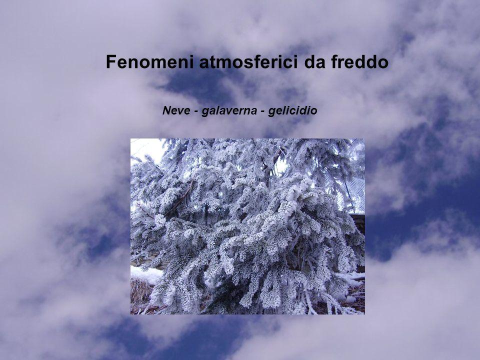 Fenomeni atmosferici da freddo Neve - galaverna - gelicidio